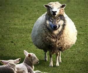 O Movimento da Igreja Emergente é uma Corrupção do Cristianismo Bíblico